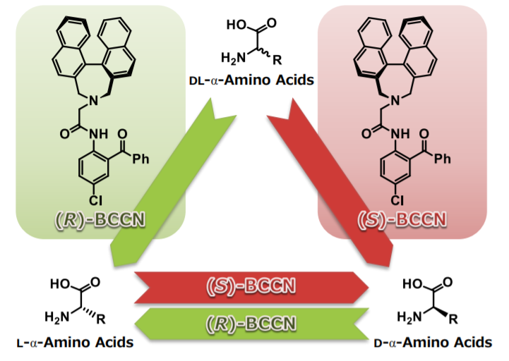 Tailor-Made-Amino-Acids
