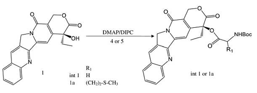 Synthesis of t-Boc-Met-CPT(1a) and the intermediate t-Bot-Gly-CPT(int 1)